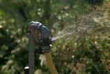 Water7434.jpg