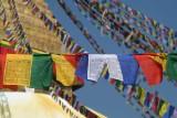 Nepal9709.jpg