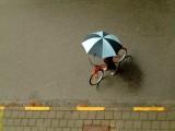 Paraplu-fiets02.jpg
