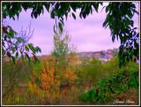 souvenirs d automnes