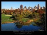 New York City 2022