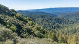 05 View of San Lorenzo Valley