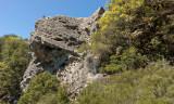 10 Goat rock