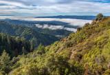 15 View from near Goat Rock (Monterey Bay in UL corner)