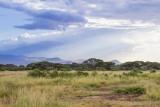 M4_10916 - Amboselli National Park, Kenya