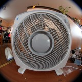 Keeping Cool - Electric fan