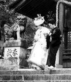 Wedding at Ono Shrine 2