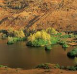 Autumn Loch Urr
