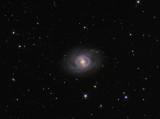NGC3351 (M95) Crop