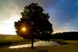 sunset at mapleside farms.jpg