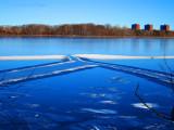Fresh Pond is freezing