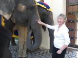 Sue with elephant