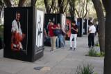 Exposicion Fotografica en la Avenida de la Reforma