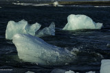 Terre de glaces