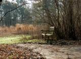 Woodlands Trail Rest Stop