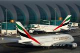 EMIRATES AIRBUS A380S DXB RF 5K5A0100.jpg