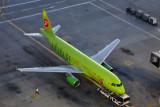 S7 AIRBUS A320 DXB RF 5K5A0526.jpg