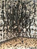 Mass (Colder Darker Matter), 1997