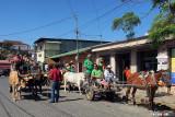 St. Patrick's Day Ox Cart Pub Crawl