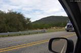 September 29th 2011 - Deer Along the Road - 3432.jpg