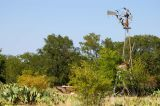 August 24th, 2006 - Broken Windmill 1691