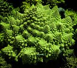 Strange broccoli