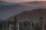 Morning Colors From Clingmans Dome