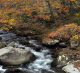 Oconaluftee River In The Fall