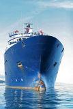 Douarnenez 2006 - Le 28 juillet - Le remorqueur de haute mer Abeille Bourbon photo 35