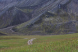 W-2012-08-05 -0756- Islande - Photo Alain Trinckvel.jpg