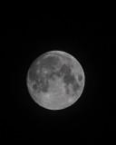 Nov 26 2012 Moon Shots-010.jpg
