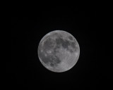 Moon Shoot Challenge, Nov 27 2012