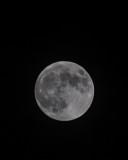 Nov 27 2012 Full Moon Shots-003.jpg