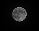 Nov 27 2012 Full Moon Shots-017.jpg
