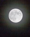 Nov 27 2012 Full Moon Shots-018.jpg