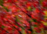 October blur