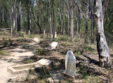 Restored cemetery at Yerranderie – 2