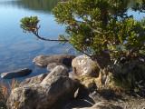 Lake Osborne, Hartz Mountains National Park, Tasmania