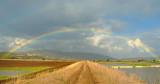 Rainbows - קשתות