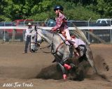 Horse Action