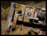 Blenny inside battery compartment on the Helmet Wreck  WWII Japanese Gun Ship?