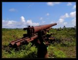 WWII Japanese gun/cannon