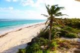 January 25-27, 2013 --- Ascension Bay, Quintana Roo, Mexico