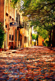 CHARLESTON, SOUTH CAROLINA. COBBLESTONE STREET-2212.jpg