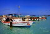 PALM BEACH, ARUBA-0550.jpg