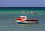 PALM-BEACH,  ARUBA-3821.jpg