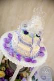 2012 Wedding T&J