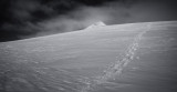Parker Ridge (Canada2_042113_163-2.jpg)