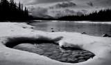 Along The Athabasca River Near Jasper  (Canada1_042013_765-2.jpg)