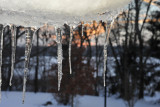 Icicles at our back window